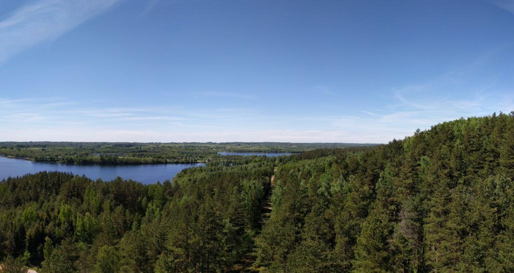 Ignalinos kraštovaizdis - miškai ir ežerai