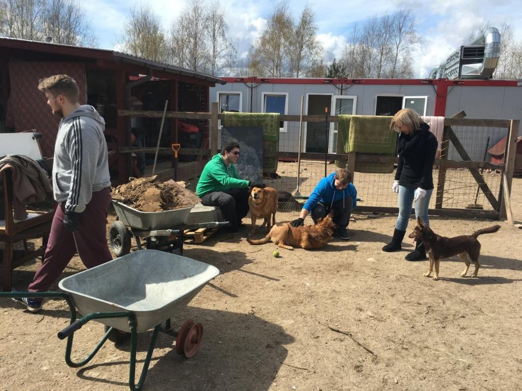 IV kolegos lankosi gyvūnų prieglaudoje