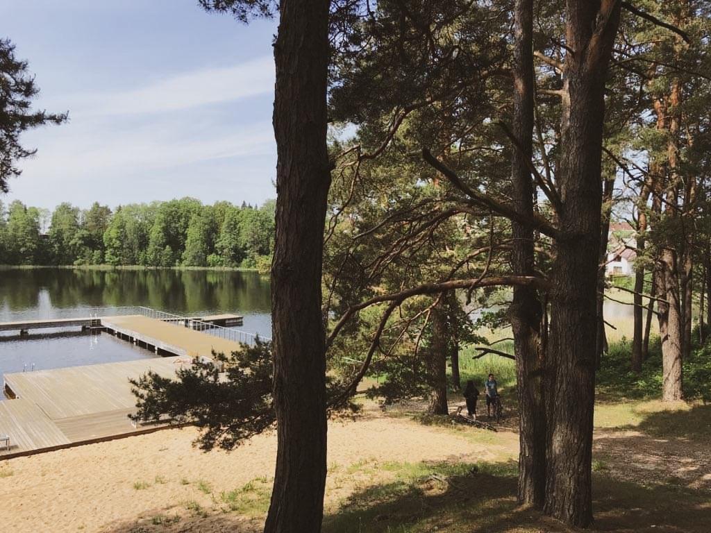 Vaizdas į ežerą Gražutės regioniniame parke